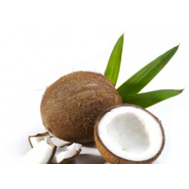 "Cocco ""in"""